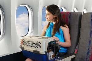 Traveling-with-Pet_iStock_000008585477Small
