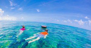 Snorkelling,In,Key,West,-,Florida,Marine,Sanctuary